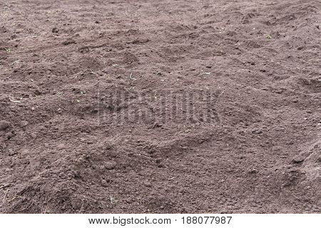 Just Dug Up A Field Ready For Planting Vegetables