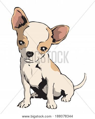 Chihuahua illustration in EPS format. The background's vector is 100% editable.