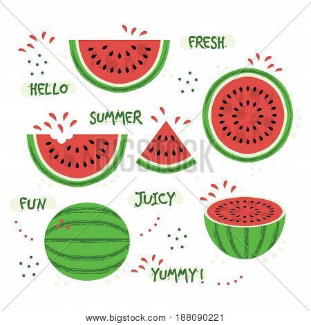Green and red whole and sliced juicy summer watermelon icons set on white background