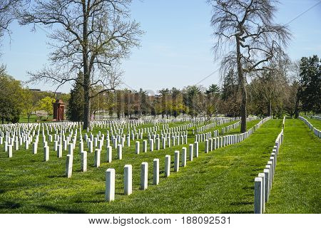 The White tombstones at Arlington Cemetery in Washington - WASHINGTON - DISTRICT OF COLUMBIA