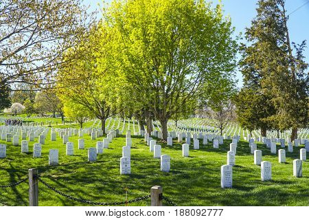 Famous Arlington Cemetery in Washington - WASHINGTON - DISTRICT OF COLUMBIA