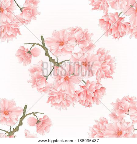 Seamless texture twig tree sakura blossoms vintage hand draw natural pink background vector illustration