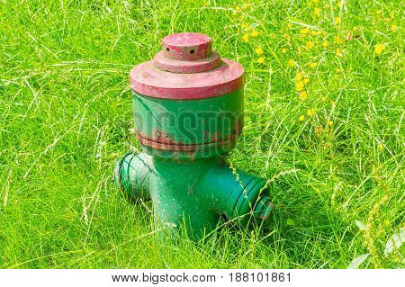 Nice Small green hydrant in a meadow