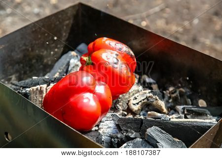 Red Sweet Peppers Roasted On The Grill, Bbq, Picnic