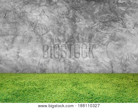 Green Grass On Cement Wall Background