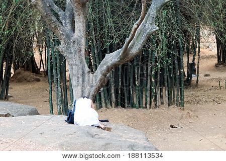 Woman bowing her head to a tree