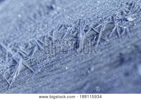 Morning Frost - Macro Picture