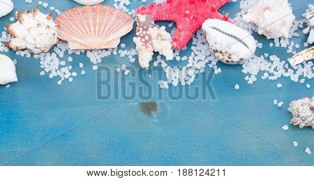 border os sea star and shells on blue table banner