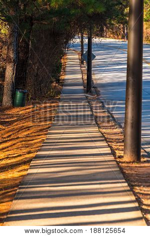 View of sidewalk with long shadows of trees in the Stone Mountain Park in sunny autumn day Georgia USA