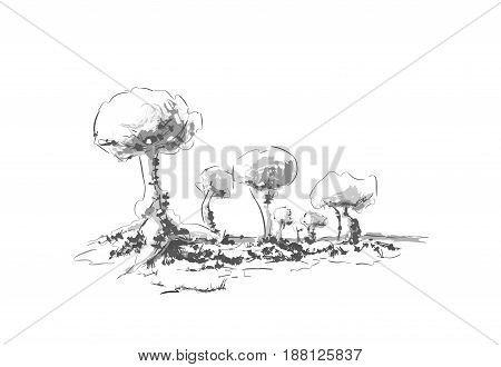 Trees nature drawn by hand on a white background