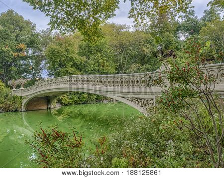 The Bow Bridge is a cast iron bridge located in Central Park New York City crossing over The Lake