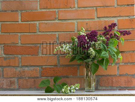 Beautiful floral syringa pattern. Brick wall background