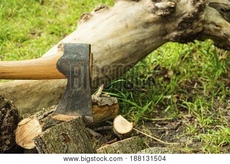 Axe ready for cutting timber. Axe in the forest on nature background.
