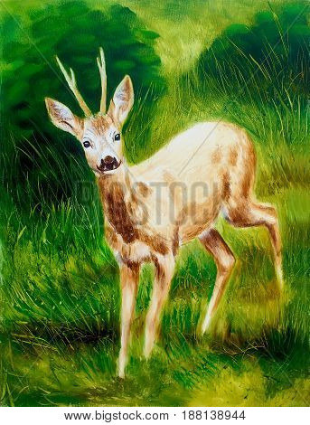 painting of young deer in wild landscape with high grass. Eye contact