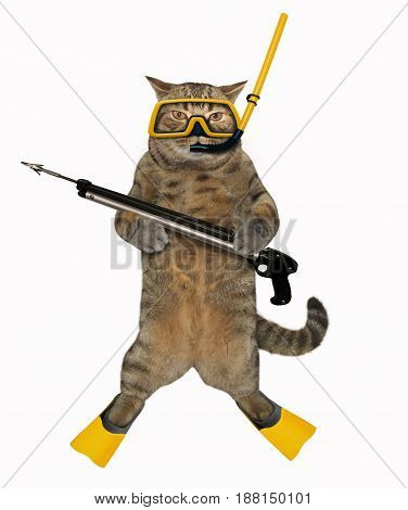 The cat diver is holding a speargun. White background.