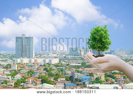 Ecology concept Human hands holding big plant with on blurred and World buildings of the public