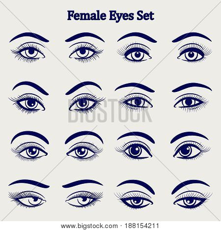 Ballpoint pen drawing female eyes set isolated on grey backdrop. Vector illustration