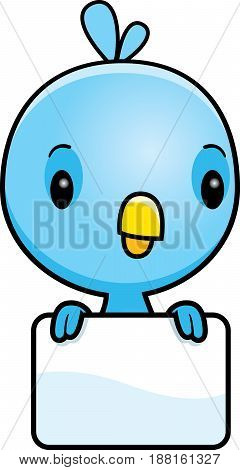 Cartoon Baby Blue Bird Sign
