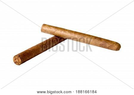 two cuban cigars closeup lying on white background.