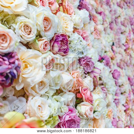 Flowers wall background with amazing red and white roses Wedding decoration hand made.