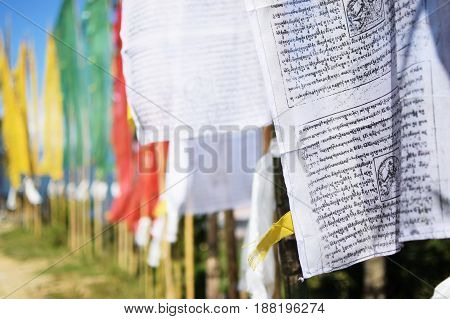 Colourful prayer flags Buddhist religious symbol - with rising sun from background. Sikkim India