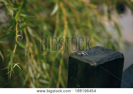 Gold wedding rings on a wooden background