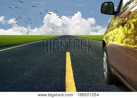 Landscape background. Car runs through natue. Beautiful nature