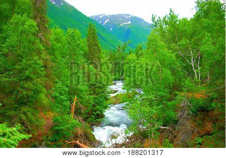 River in the mountains during the spring thaw