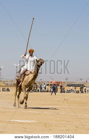 JAISALMER INDIA - FEBRUARY 09 2017 : Unidentified men play camel polo at Desert Festival in Jaisalmer Rajasthan India. Main purpose of Festival is to display colorful culture of Rajasthan