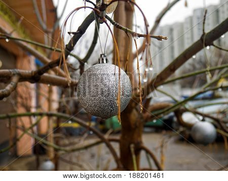 Christmas ball on the tree in spring, Moscow
