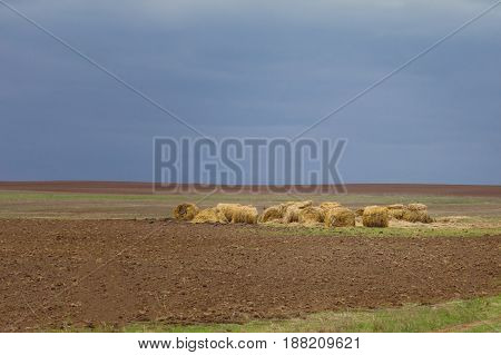 Landscape, bales of hay in a field under the autumn sky