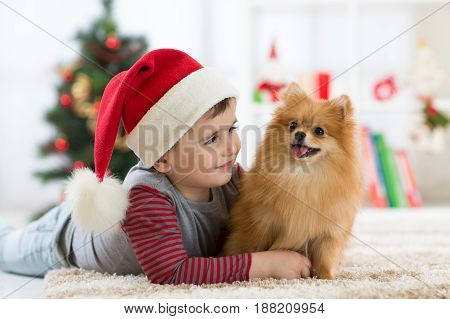 Happy kid little boy and dog at Christmastime