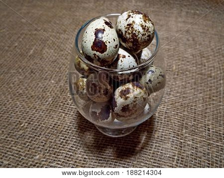 Delicious and healthy quail eggs - a dietary product, rich in vitamins and proteins