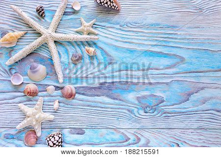 Summer sea background - shells star on a wooden blue background with copy space