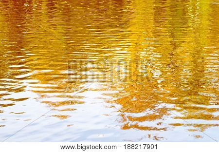 Abstract Background Of Rippled Water Reflecting Aurumn Yellow Trees And Blue Sky