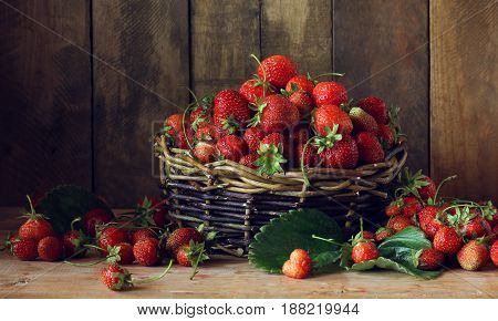 Basket of ripe strawberries on wooden background. Country still life with berries.