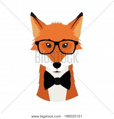 hipster fox wear bow and glasses fashionable icon vector illustration