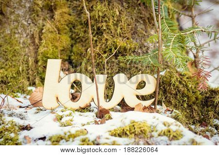 Wooden love sign outdoor with green grass and snow. Spring concept.