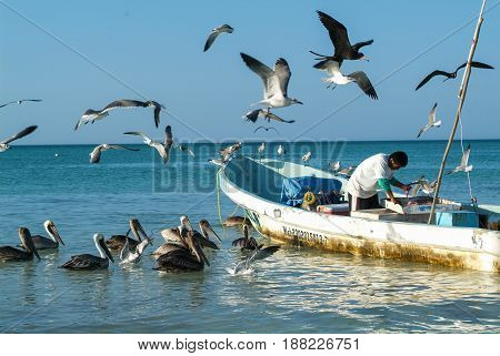 Fisherman On His Boat At The Beach Of Holbox Island