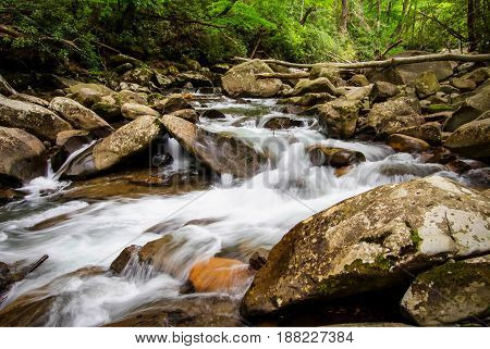 Cool Mountain Stream. Mountain stream flows through the lush green forests of the Great Smoky Mountains National Park in Gatlinburg, Tennessee. The Smokies are America's most visited national park.