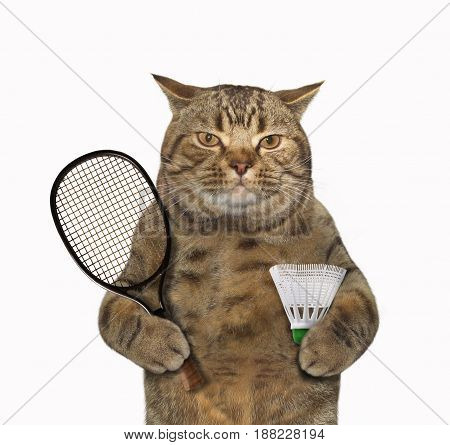 The cat is holding a badminton racquet and a shuttlecock. White background.
