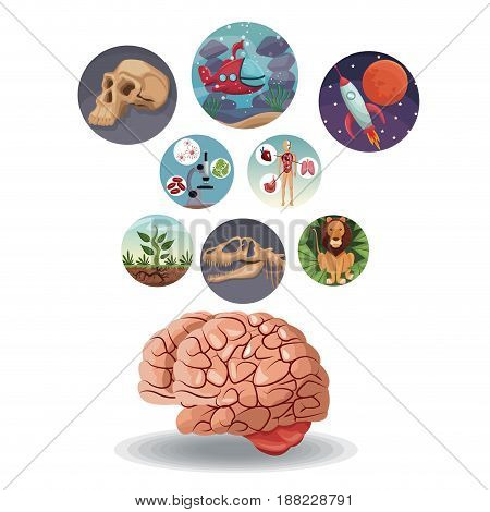 color circular icons with picture world evolution inside with above brain vector illustration