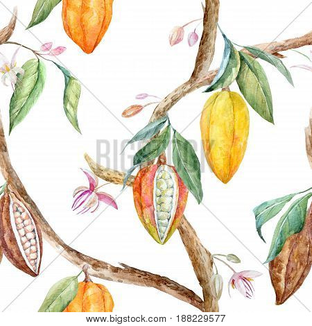 Tropical seamless pattern with watercolor cacao fruits and leaves