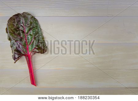 Red Leaf of Rainbow Chard with Copy Space to Right