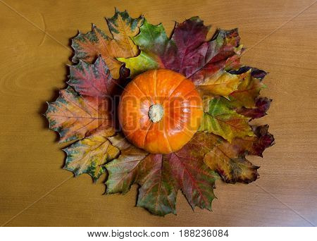 Orange pumpkin and autumn leaves on wooden background