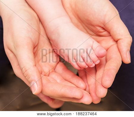 the foot of a small baby in the hand of an adult
