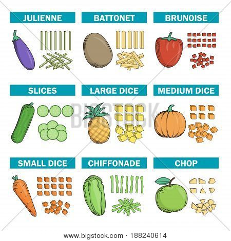 Cooking chef information chart, illustrations demonstrating various kinds of knife cut chop techniques of fruit, vegtables.