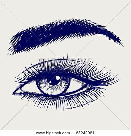Ballpoint pen sketch of beautiful female eye. Vector illustration
