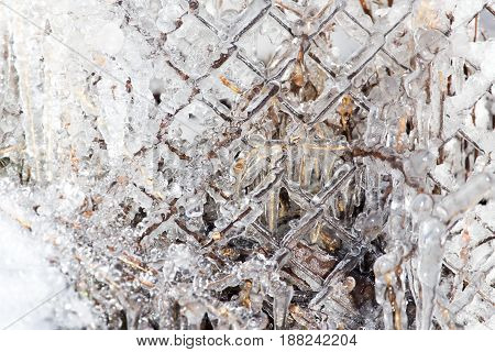 Ice on a the fence . A photo