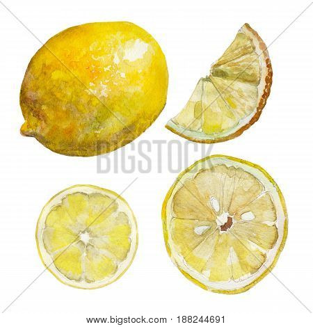 The set of sliced lemon isolated on white background watercolor illustration in hand-drawn style.